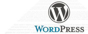 The Increase in Popularity of WordPress